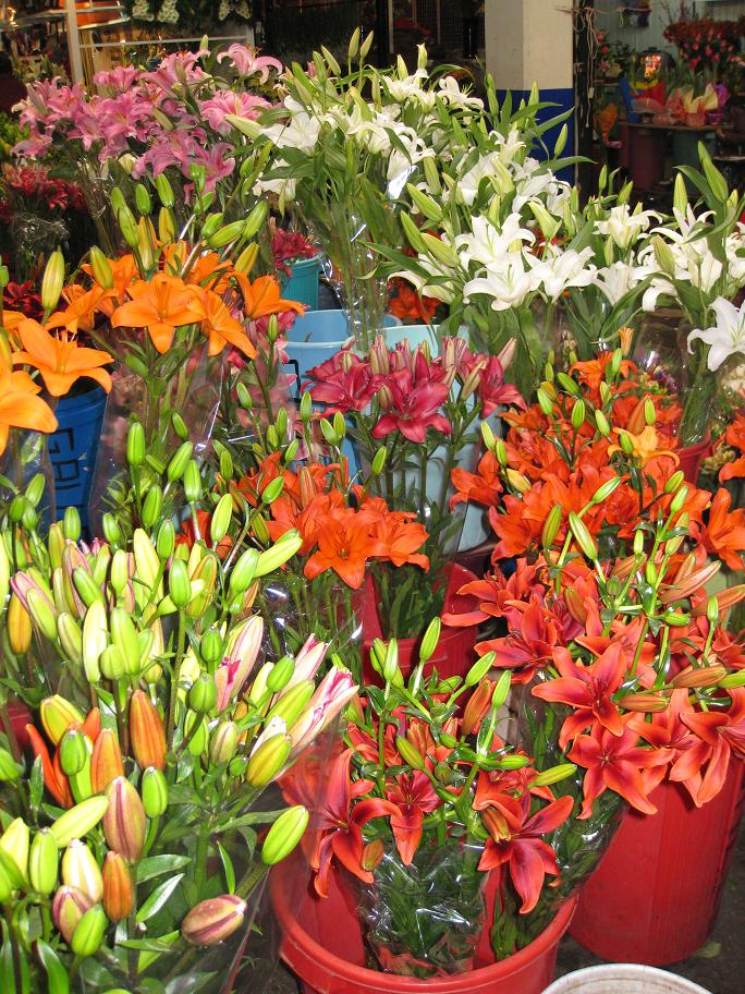 John's favorite-- pollen-laden lillies. That said, by some act of God, we managed to get through this whole market with neither John's nor Bob's allergies acting up. A small miracle.