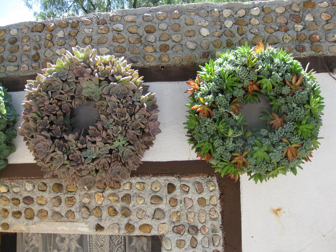 Here are two of the cactus wreaths sold at the cactus farm/store down the hill from the hacienda. These were absolutely stunning, but need a fair amount of sun so I decided to pass on them...
