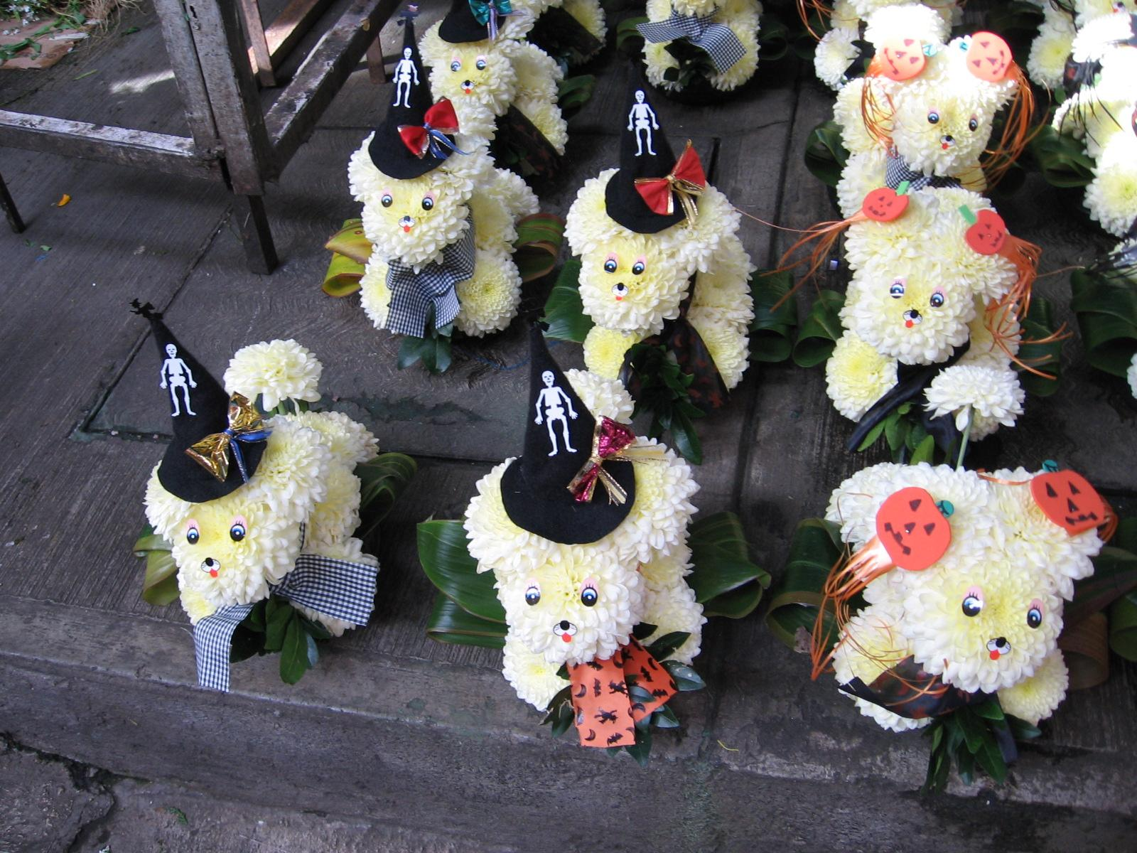 My favorite little white flower dogs from my last visit to Mercado Jamaica were now decked out in their festive Halloween best.
